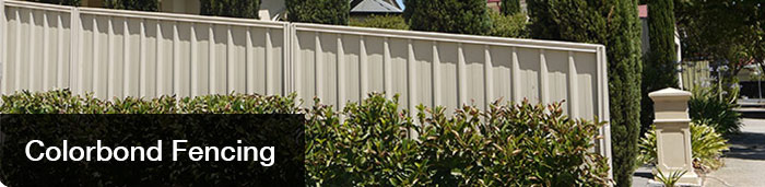 Colorbond Broadview Fencing Adelaidebroadview Fencing